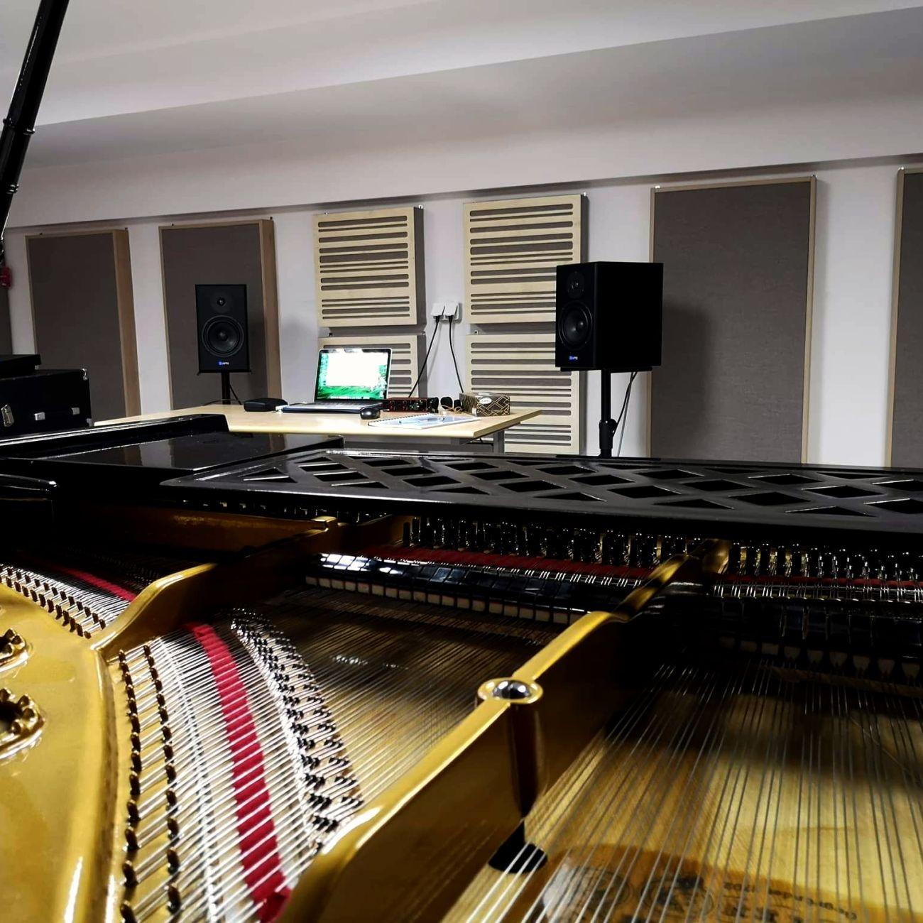 ustroje akustyczne
